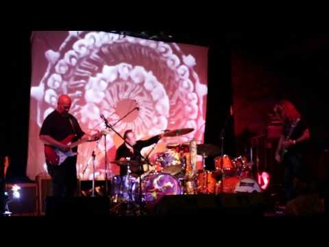 The Mermen - Madagascar (Live 2016)