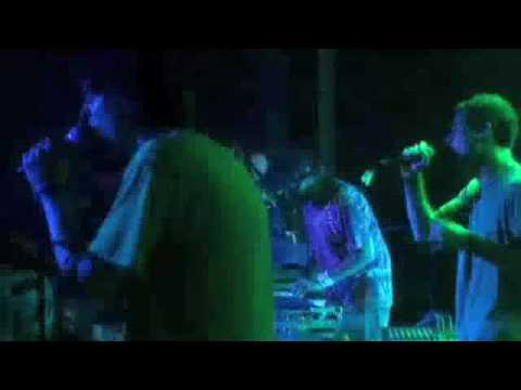 animal collective leaf house