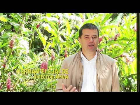 Hechos para la Vida - Municipio de Medellin