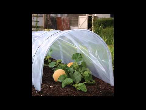 The Best Garden Cloche 2015 YouTube