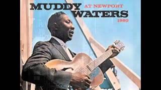 Coleção 70 anos de música. Anos 60 /  Muddy Waters Igot my brand on.
