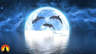 🔴Sleep Music 247 Calming Music Relaxing Music Sleep  Nsomnia Study Music Sleep Meditation