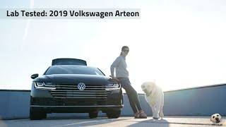 2019 Volkswagen Arteon: Andie the Lab Review!
