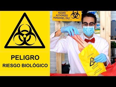 Contenedores de residuos biológicos peligrosos - Qué Hay Dentro?