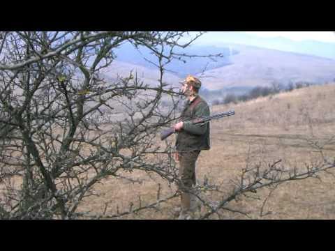 Inchiderea sezonului de vanatoare la fazani si vulpi cu gr Somes Dej 2014 2015