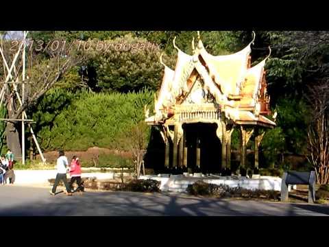 "Japan Trip 2013 Tokyo ""Ueno Zoo"" Sala Thai สวนสัตว์อุเอะโนะ (3)"