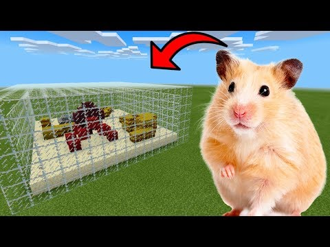 How To Make a HAMSTER Farm in Minecraft PE | MCPE Journalist