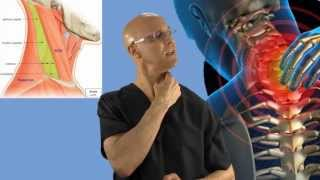 90-Second Relief Technique for a Stiff Neck (Wry Neck, Torticollis) - Dr Mandell