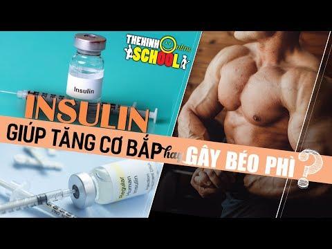 Insulin chìa khóa tăng trưởng và phát triển cơ bắp nhưng liệu có bị mập lên hay không?