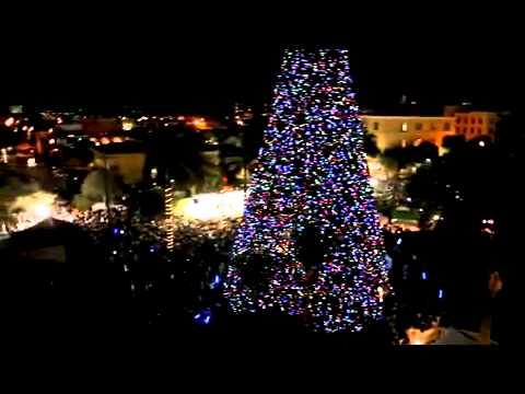 Delray Beach 100 ft Christmas tree lighting YouTube