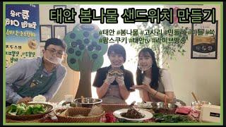 태안TV - 태안 봄나물 샌드위치 공개!