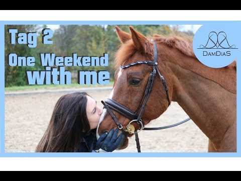 [One Weekend with me] - TAG 2 - Stall & Familientag