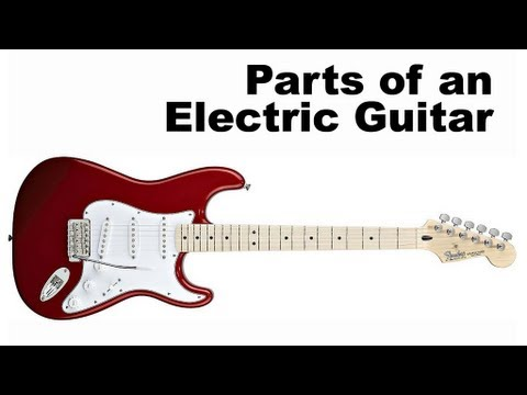 Parts of an Electric Guitar Tutorial for Beginners (Guitar Lesson ...