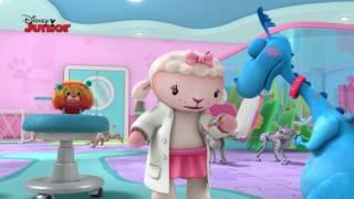 Momentos Especiais A Doutora Brinquedos: Caos no veterinário