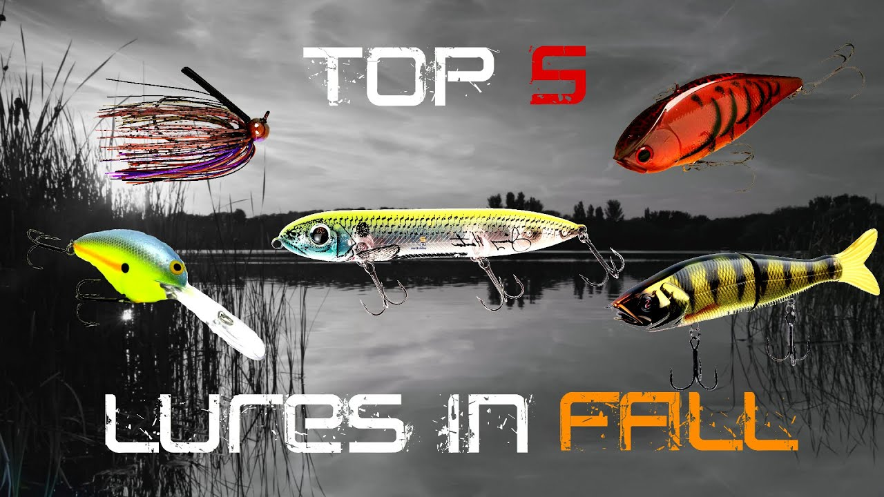 Top 5 Fall Baits To Catch Bigger Bass Youtube