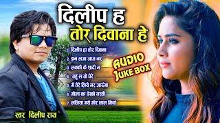दिलीप राय Dilip ray | Cg Song | Dilip Ha tor Diwana He | Audio Juke Box | New Chhattisgarhi Geet