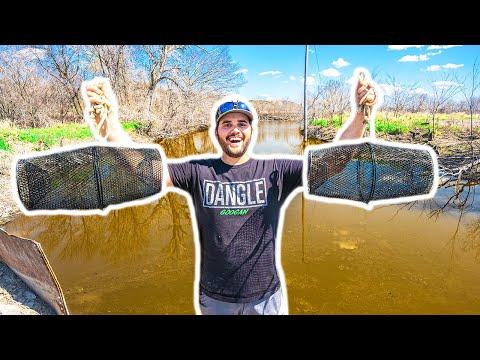Trapping TINY CATFISH At My FARM In NASTY RIVER!!! (Feeding Pet Fish)