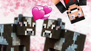 MAKING MORE COWS... | Minecraft - Part 13