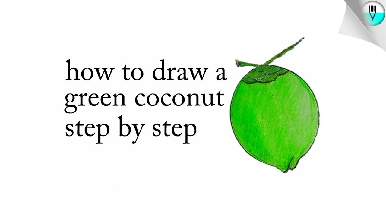 How To Draw A Green Coconut Step By