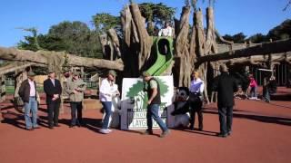 Elinor Friend Playground Grand Opening!