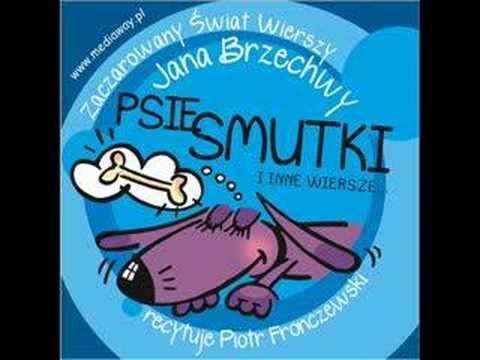 Wiersze Dla Dzieci Jan Brzechwa Psie Smutki Czyta Piotr Fronczewski