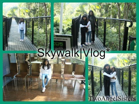 Vlog #1 Skywalk Mt Tambourine TwoAngelSisters