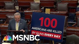 New PSA Designed To Jolt The Gun Debate In Washington Out Of Its Stalemate | Deadline | MSNBC