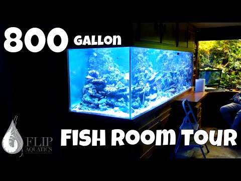 3 Monster Aquariums: 800 gallon Aquarium, 700 and 300 gallon fish tanks... WOW!