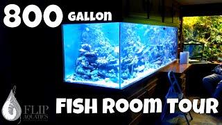 3 Monster Aquariums: 800 gallon Aquarium, 700 and 300 gallon fish tanks... WOW!