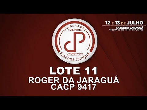LOTE 11 (CACP 9417)