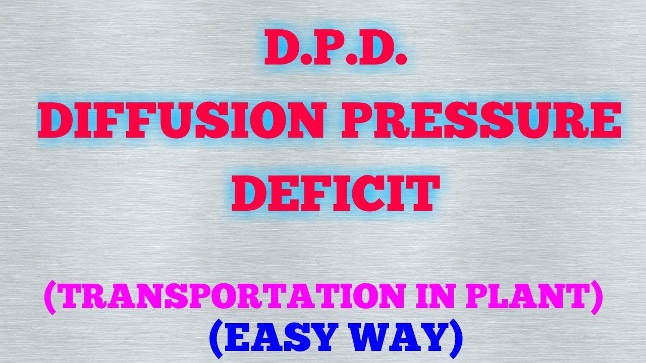 Download DIFFUSION PRESSURE DEFICIT (D.P.D.) / TRANSPORTATION IN PLANT (PART 3)