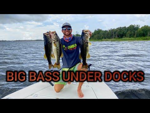 BIG BASS In WINDY Conditions Dock Fishing Lake Buffum