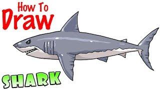shark draw easy way