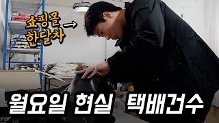쇼핑몰 한달차의 현실적인 월요일 택배 건수 feat.알…