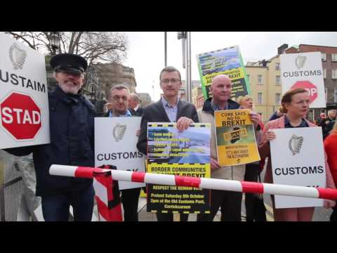 No to Brexit protest at Leinster House