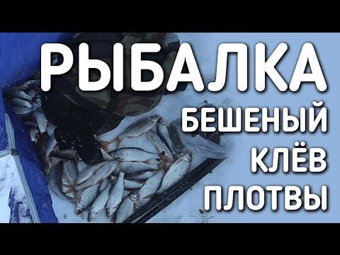 зимняя рыбалка на плотву - 2017-01-19 09:08:25