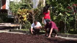 ICI et AILLEURS - SAMBAVA : 20 AVRIL 2014