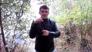 deaf.молдова город леова был мост через прут