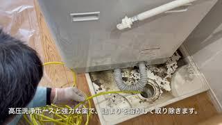 大都環境サービス 洗濯槽受皿清掃