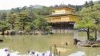中国のツイッター・微博で 最近観光で訪れた 京都・金閣寺の前で経験し...