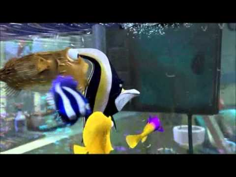 Nemo clogs the filter youtube for Fish tank full movie