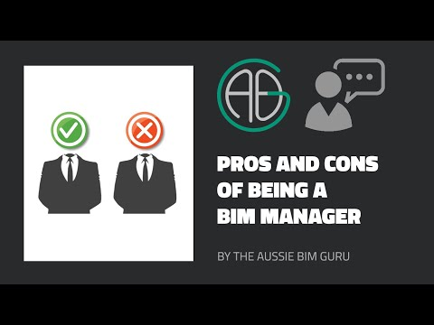 Pros And Cons Of Being A BIM Manager