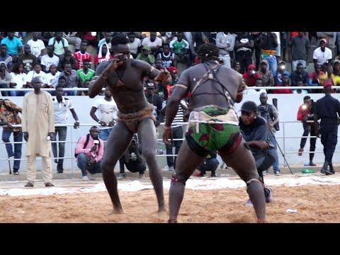 Intégralité combat Papa Boy Djiné vs Papa Yade et Agogo vs Socé Mané... thumbnail
