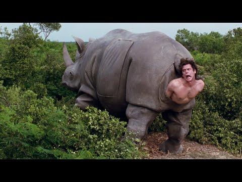 Песни о природе и животных из кинофильмов