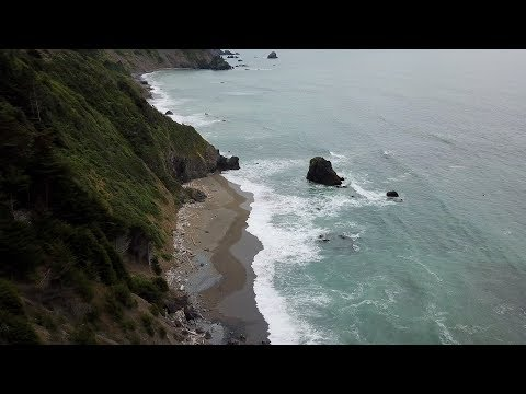 Redwood Coast (4k)