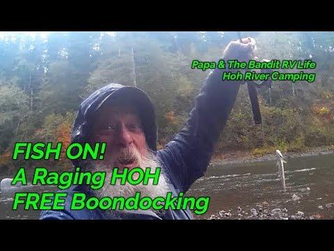 HOH RIVER, WA. Free Boondocking, Olympic Peninsula, Hoh Rain Forest, Raging River,