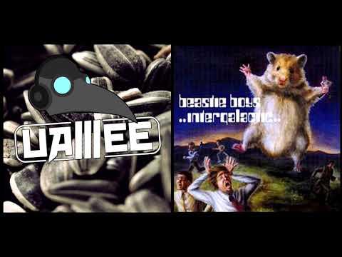 Intergalactic Russian Air Force (Uamee x Beastie Boys Mashup)
