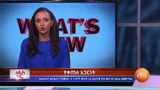 University Entrance Exam Result/  Ethiopian Airlines - What's New | TV Show