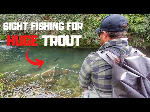 fly-fishing-for-trout-in-a-lost-world-[part-2]