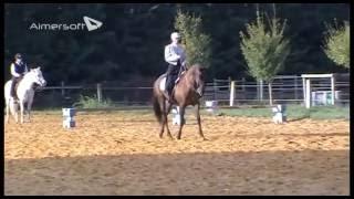 Epreuves équitation de travail septembre 2016